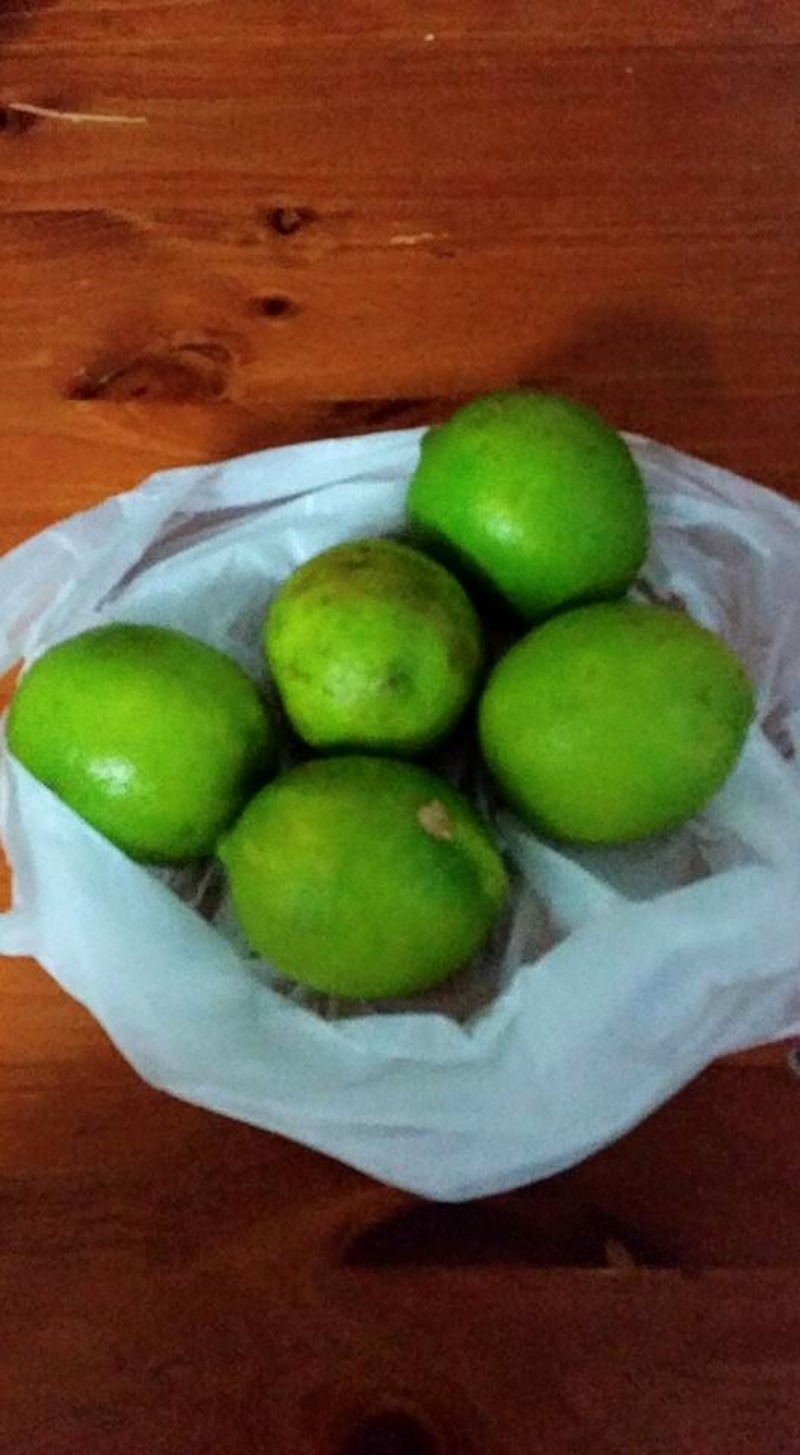 Limes  - Gratitude challenge: A is for Afternoons at the markets